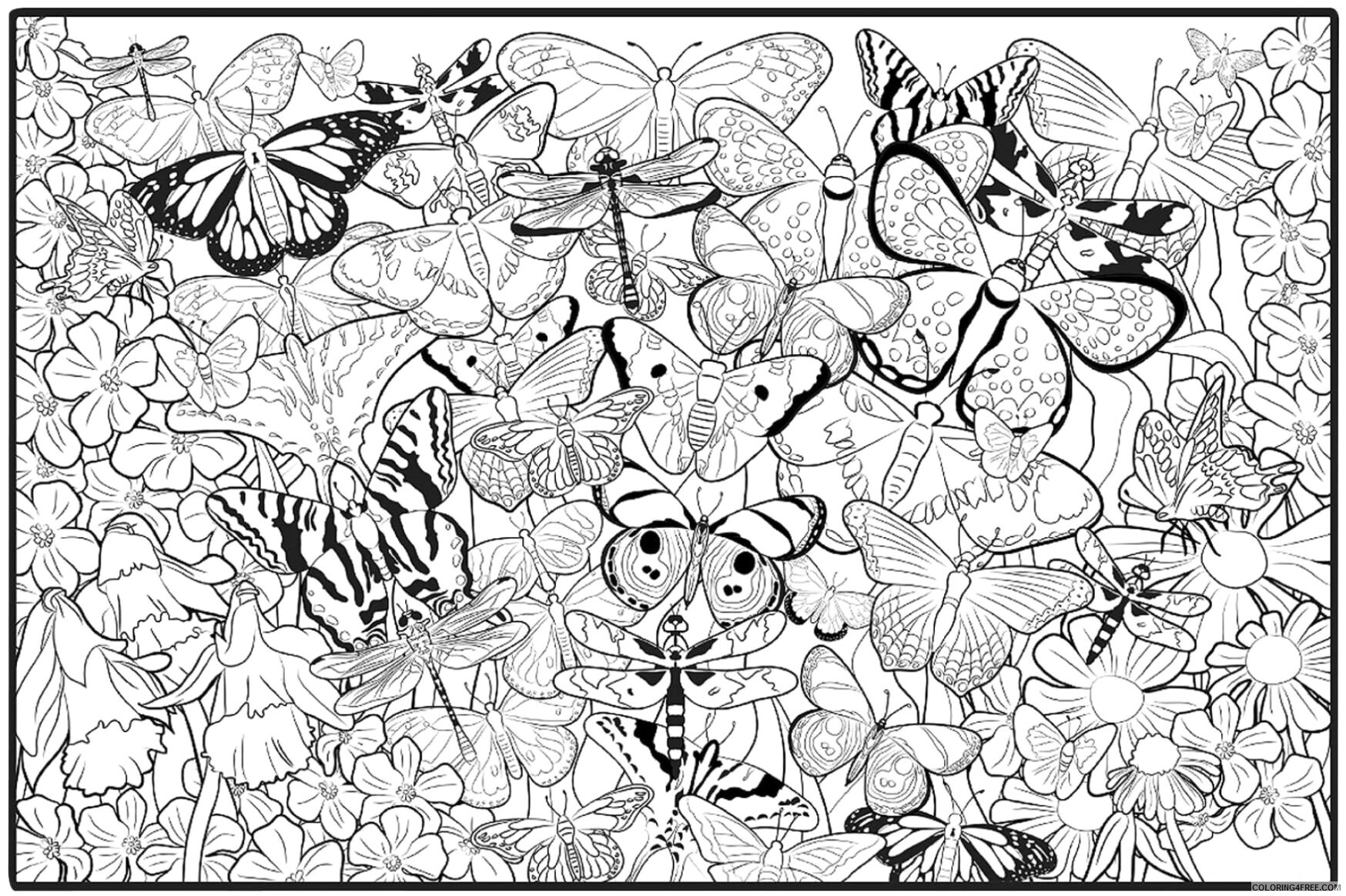 Adult Butterfly Coloring Pages Hard Butterfly for Adults Printable 2020 197 Coloring4free