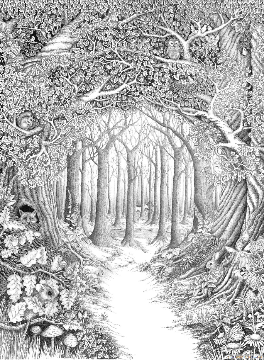 Adult Coloring Pages Forest Scenery for Adults Printable 2020 027 Coloring4free