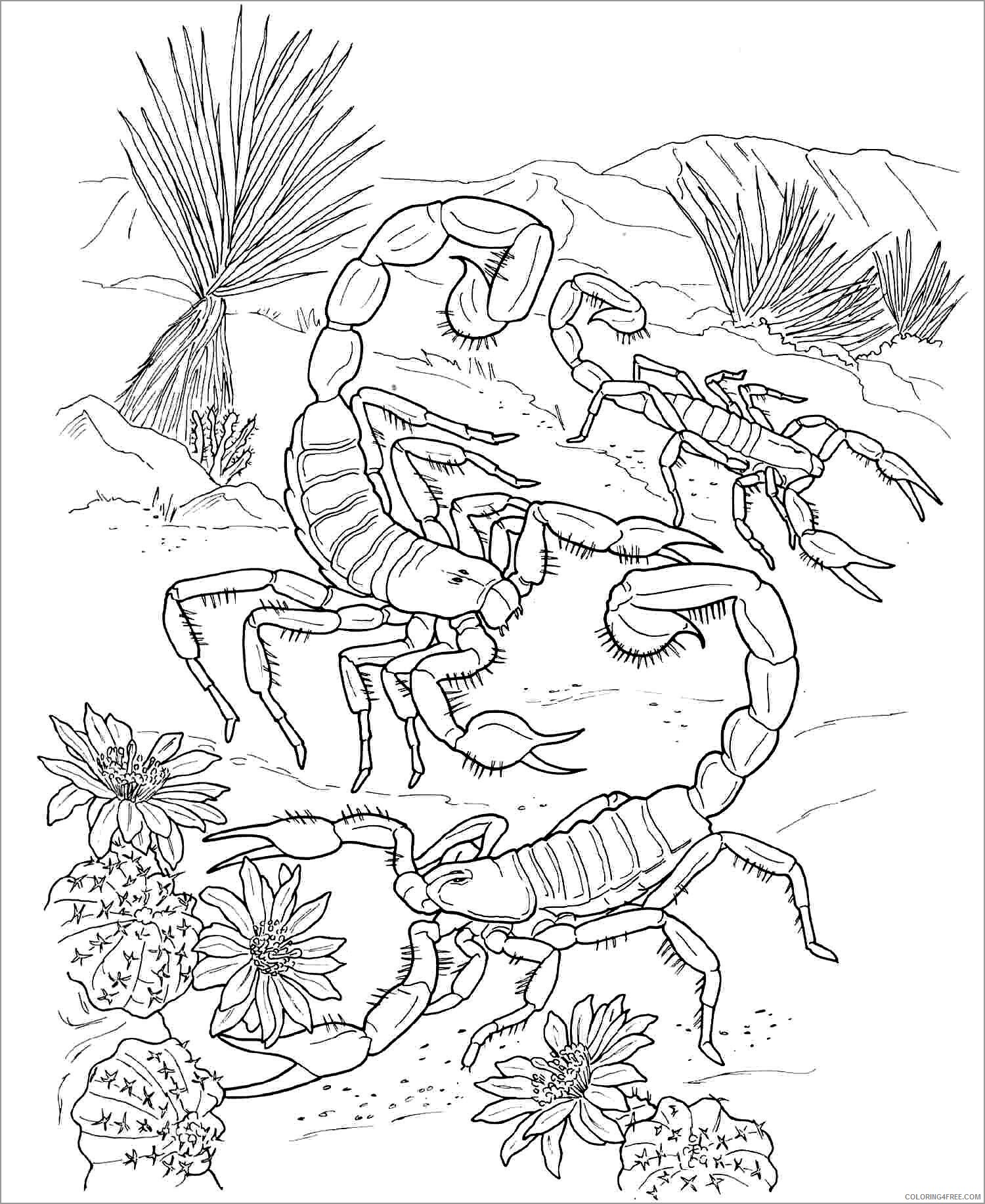 Adult Coloring Pages scorpio for adult Printable 2020 069 Coloring4free