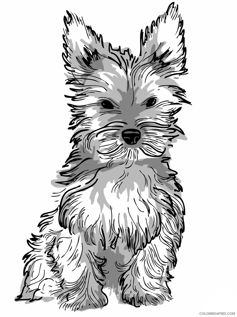 Adult Dog Coloring Pages Adult Realistic Dog Printable 2020 221 Coloring4free