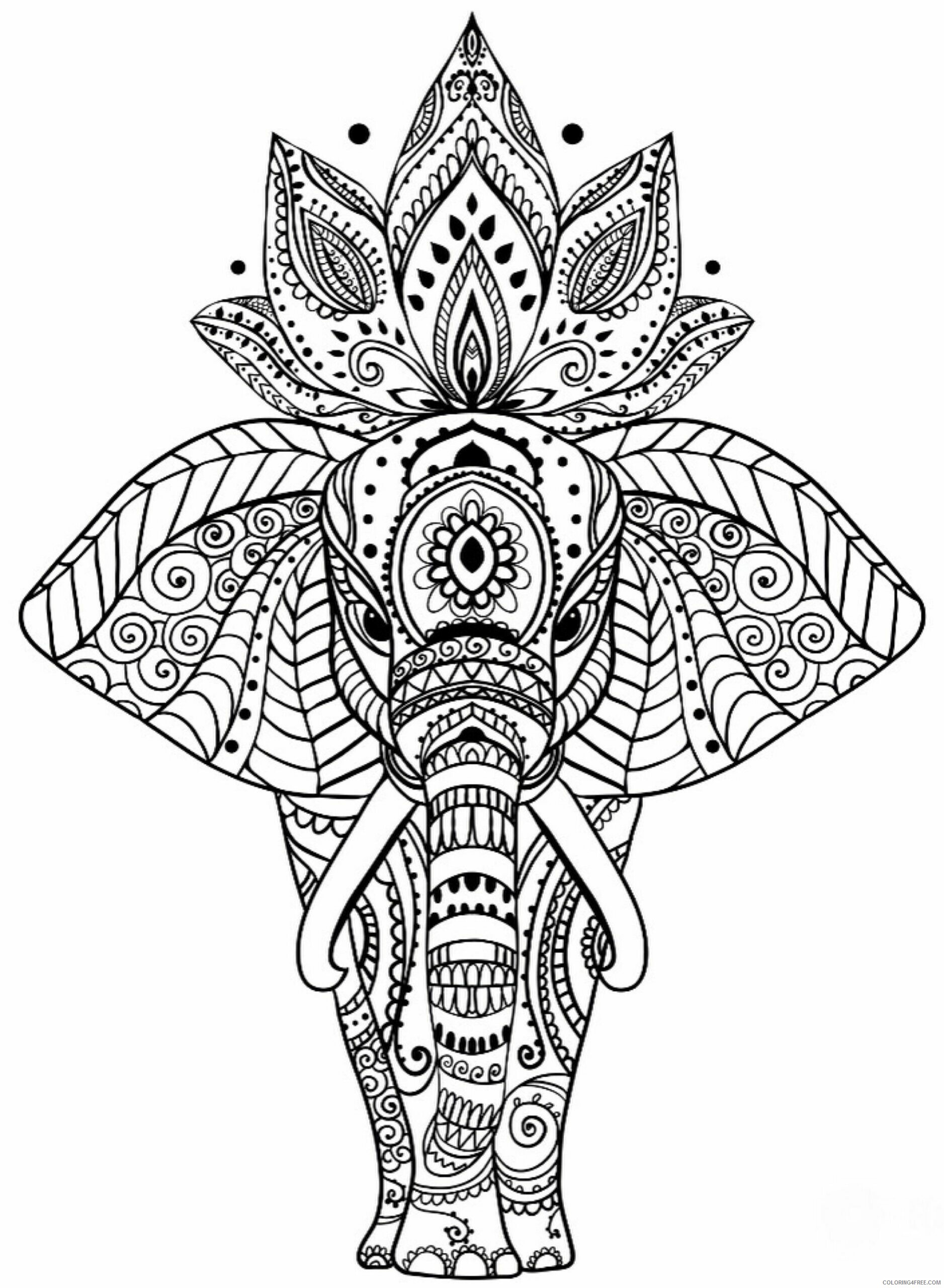 Adult Elephant Coloring Pages Elephant for Adults Printable 2020 265 Coloring4free