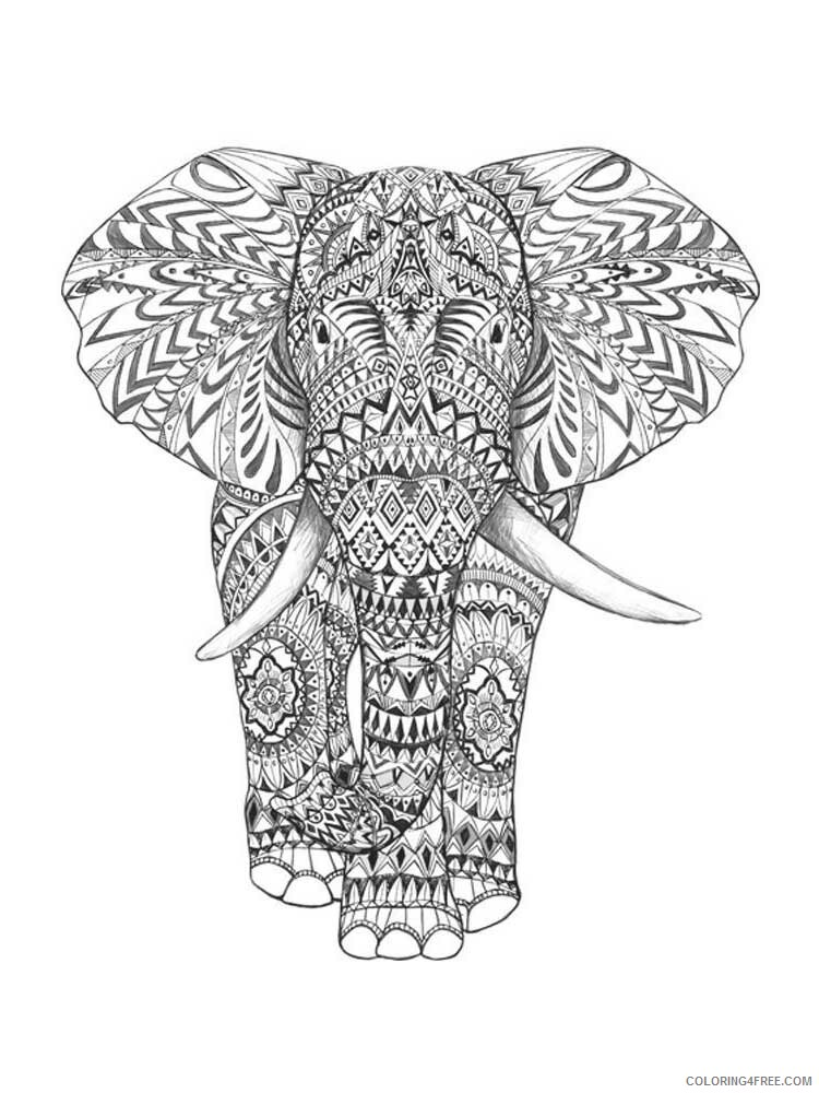 Adult Elephant Coloring Pages elephant for adults 2 Printable 2020 272 Coloring4free