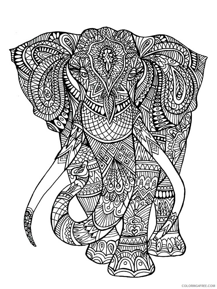 Adult Elephant Coloring Pages elephant for adults 8 Printable 2020 278 Coloring4free