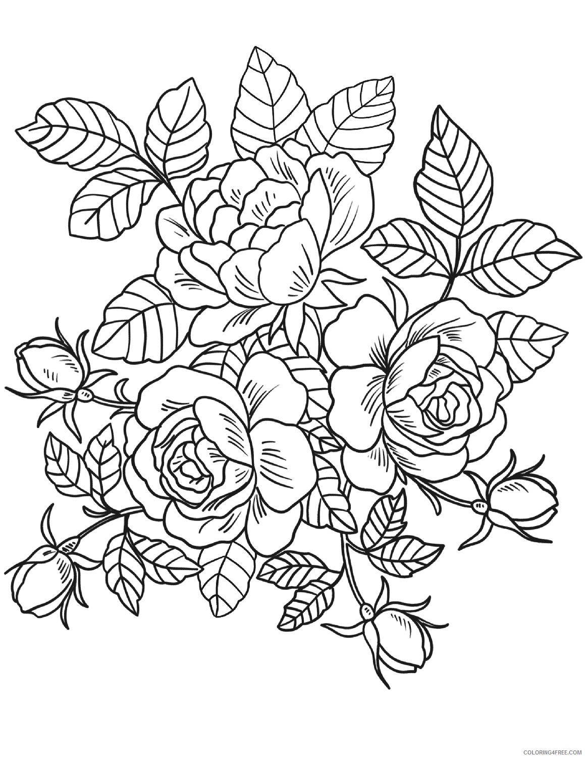 Adult Floral Coloring Pages Floral Printable 2020 324 Coloring4free