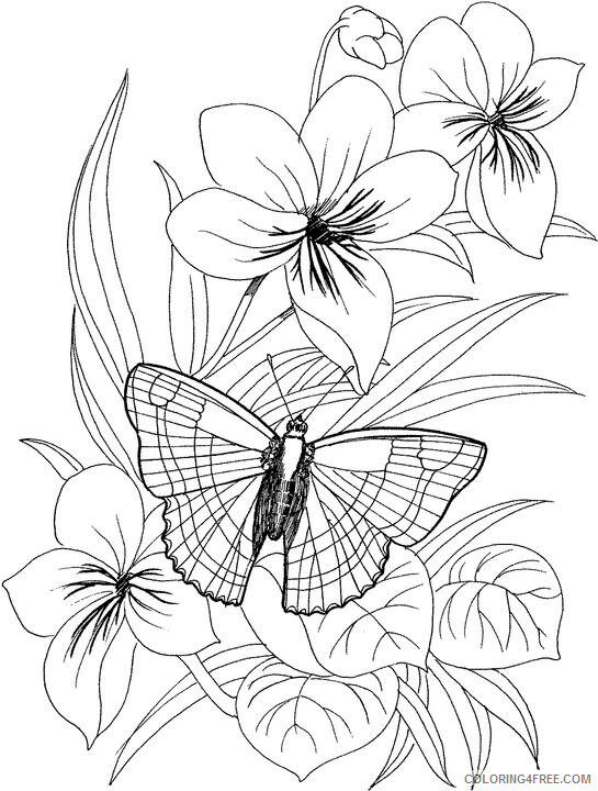 Adult Floral Coloring Pages Flower for Adults Printable 2020 355 Coloring4free