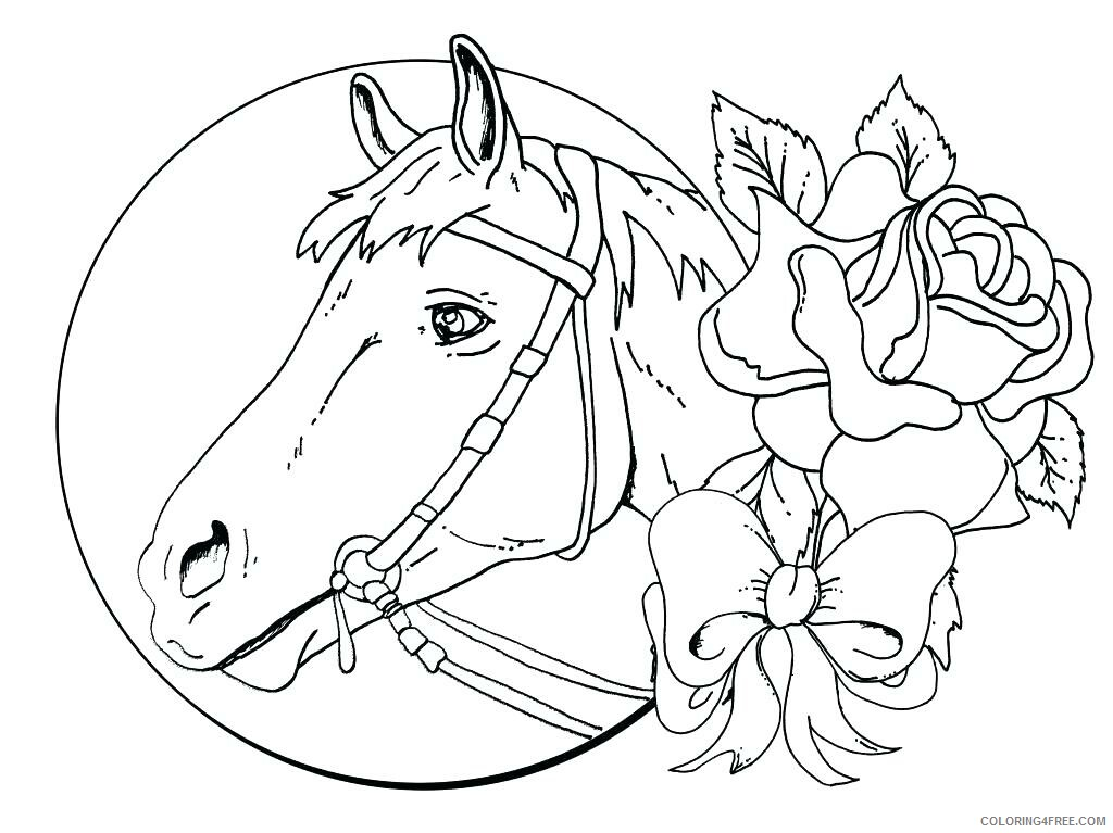 Adult Horse Coloring Pages Winner Horse for Adults Printable 2020 422 Coloring4free