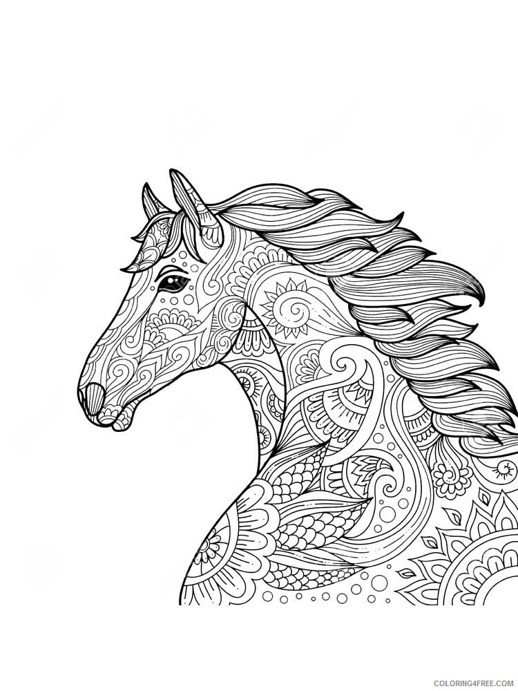 Adult Horse Coloring Pages horse for adults 2 Printable 2020 409 Coloring4free