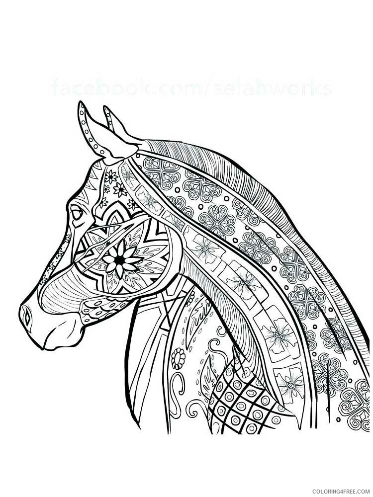 Adult Horse Coloring Pages horse for adults 5 Printable 2020 412 Coloring4free