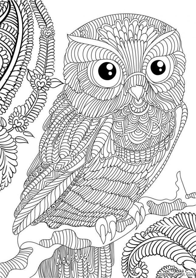Adult Owl Coloring Pages Free Adult Owl Printable 2020 430 Coloring4free -  Coloring4Free.com