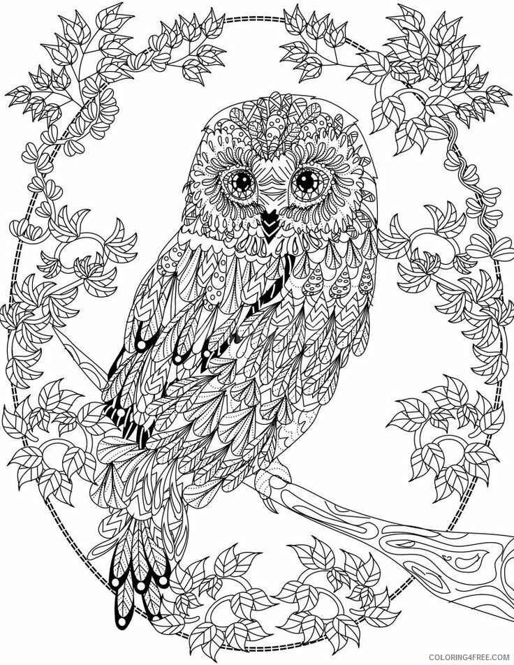 Adult Owl Coloring Pages Free Owl For Adults Printable 2020 429  Coloring4free - Coloring4Free.com
