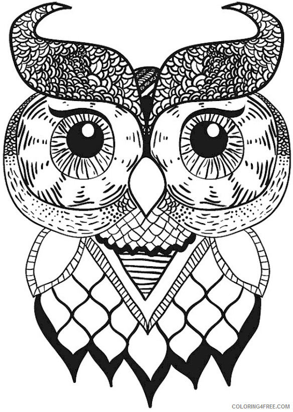 Adult Owl Coloring Pages Free Owl for Adults Printable 2020 431 Coloring4free