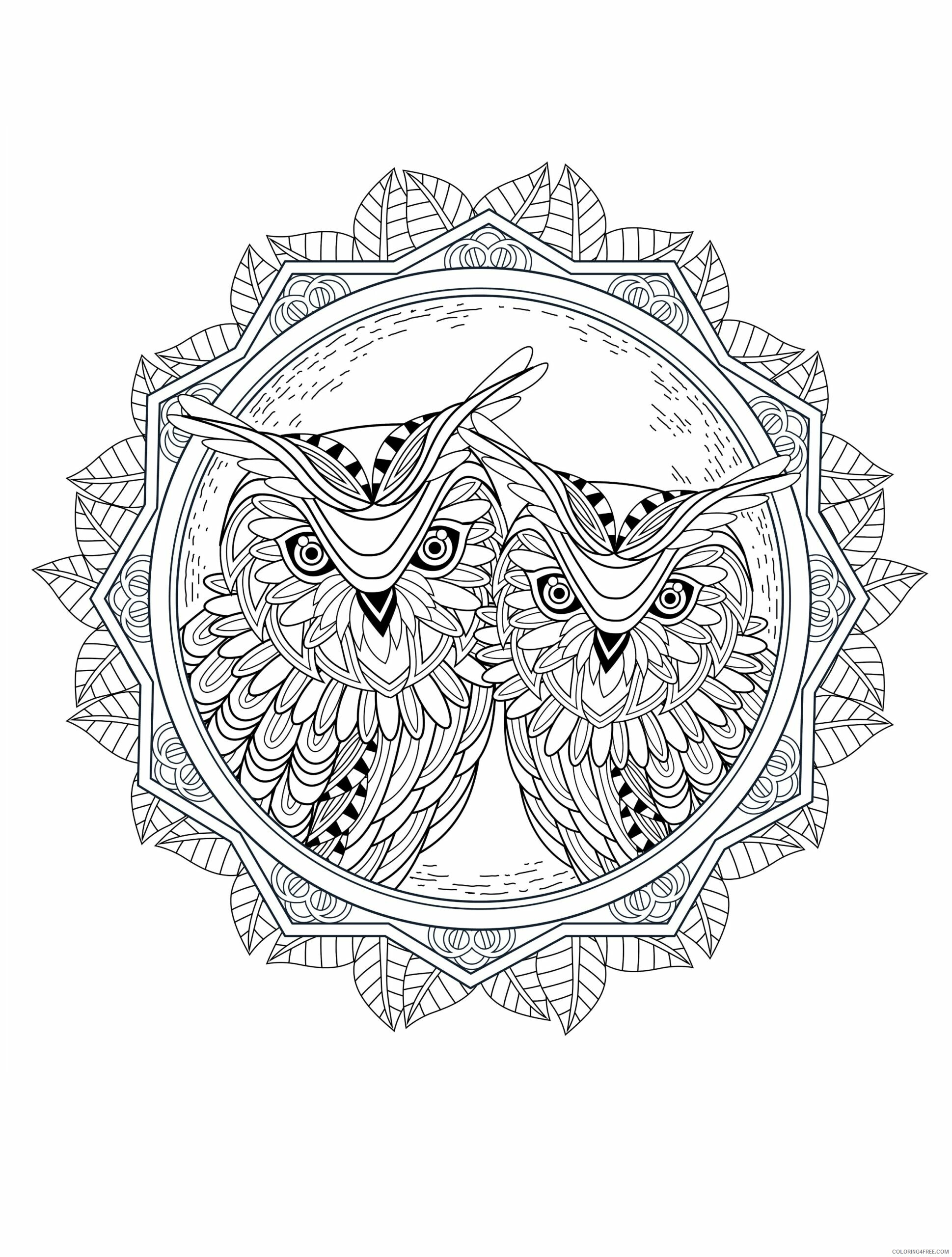 Adult Owl Coloring Pages Printable Owl for Adults Free Printable 2020 454 Coloring4free