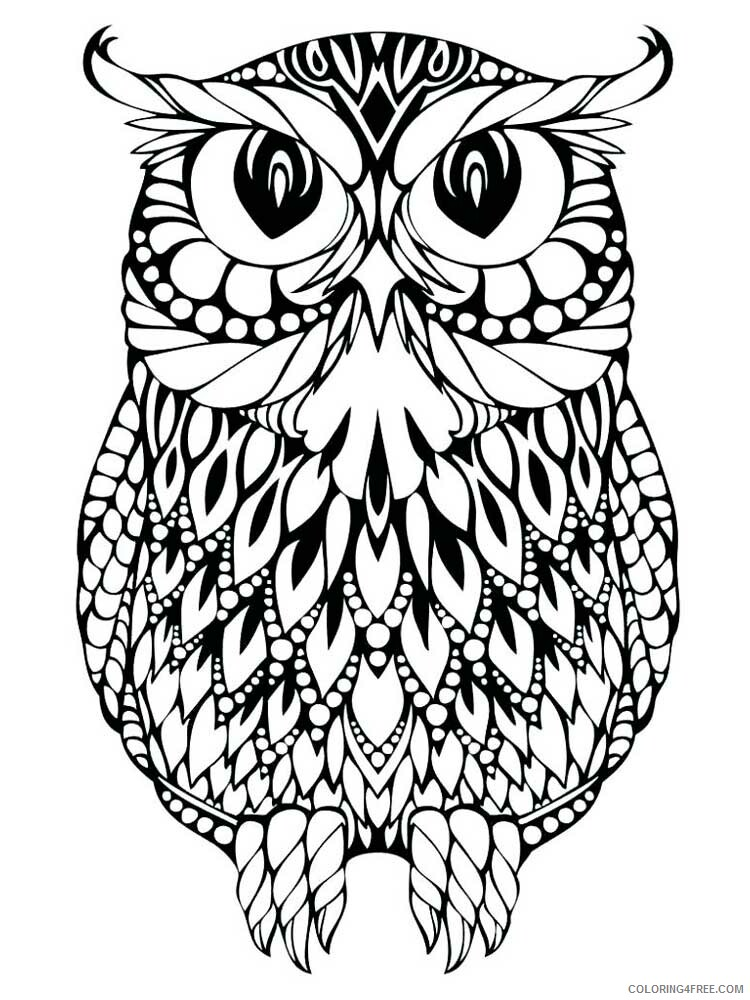 Adult Owl Coloring Pages owl for adults 16 Printable 2020 440 Coloring4free