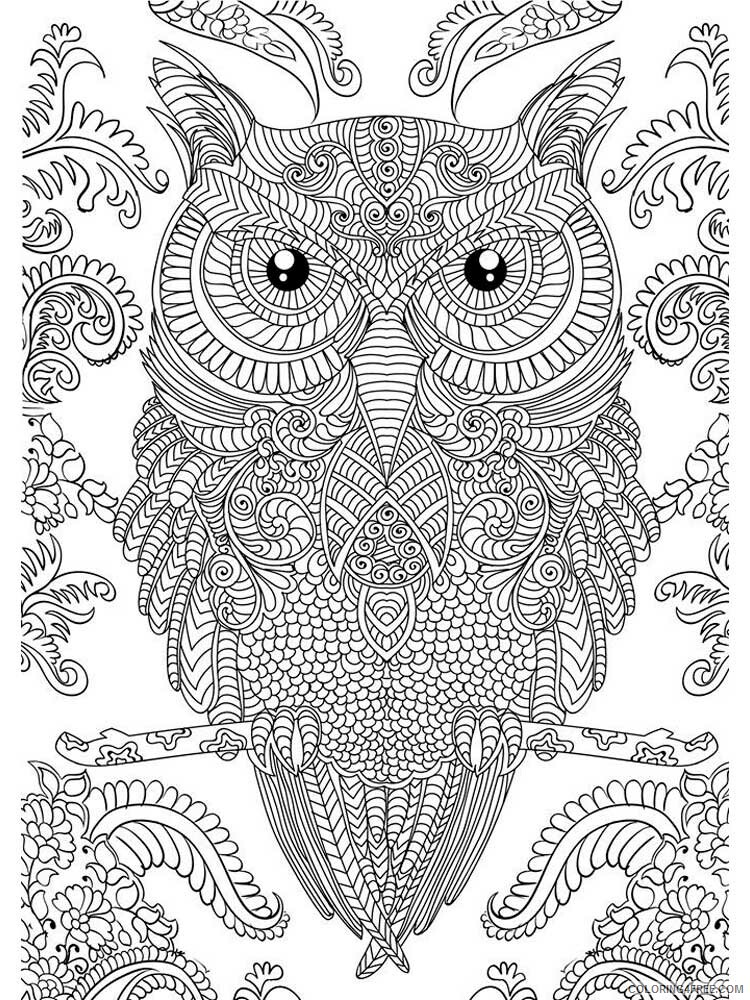 Adult Owl Coloring Pages owl for adults 4 Printable 2020 445 Coloring4free