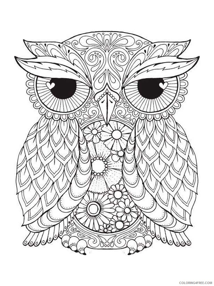 Adult Owl Coloring Pages owl for adults 5 Printable 2020 446 Coloring4free