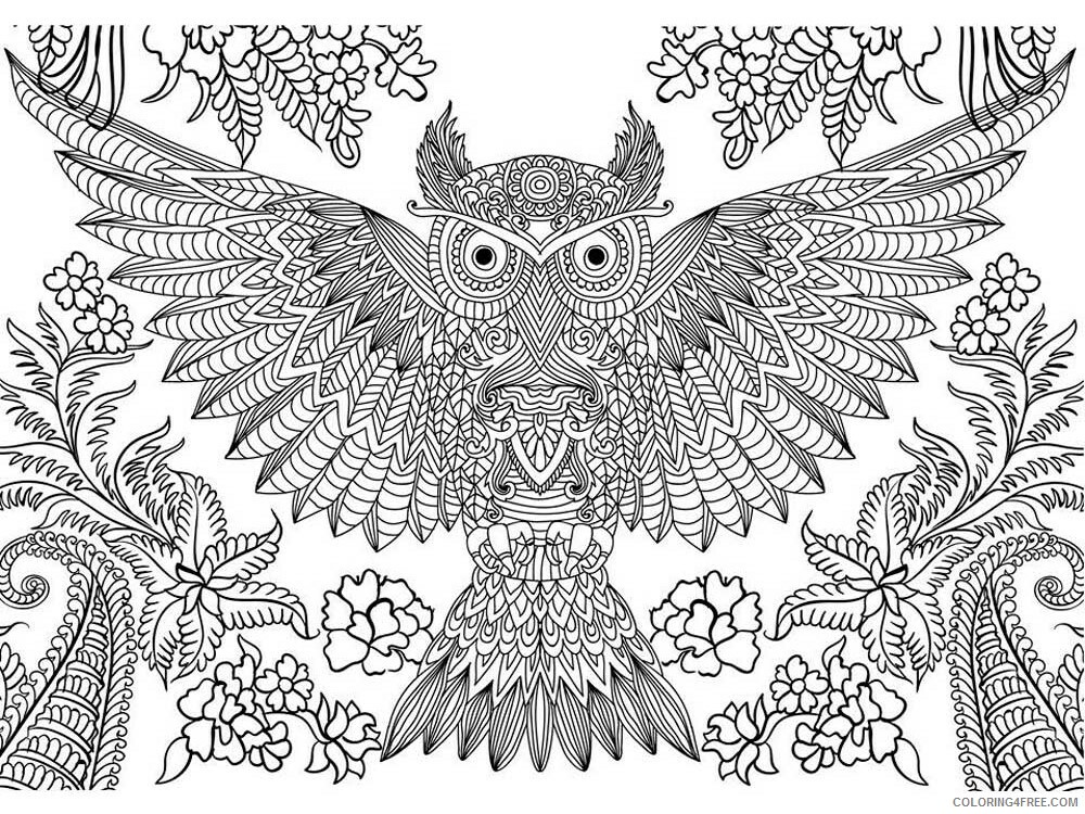 Adult Owl Coloring Pages owl for adults 6 Printable 2020 447 Coloring4free