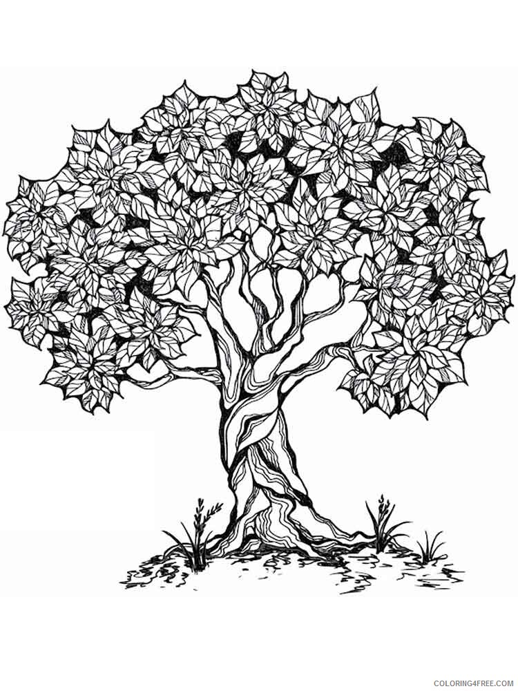 Adult Tree Coloring Pages adult tree 17 Printable 2020 496 Coloring4free