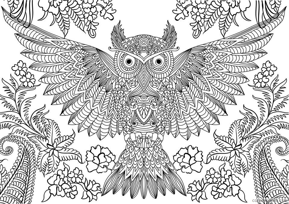 Complex Coloring Pages Adult Complex Owl for Adults 1 Printable 2020 226 Coloring4free