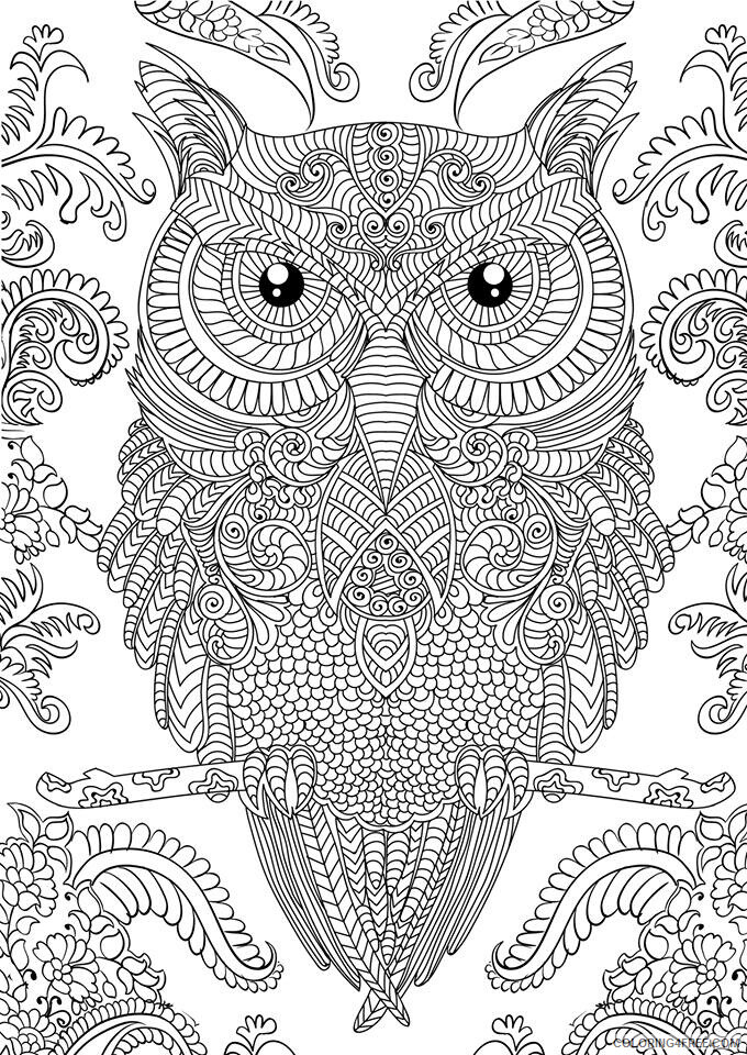 Complex Coloring Pages Adult Complex Owl for Adults Printable 2020 225 Coloring4free