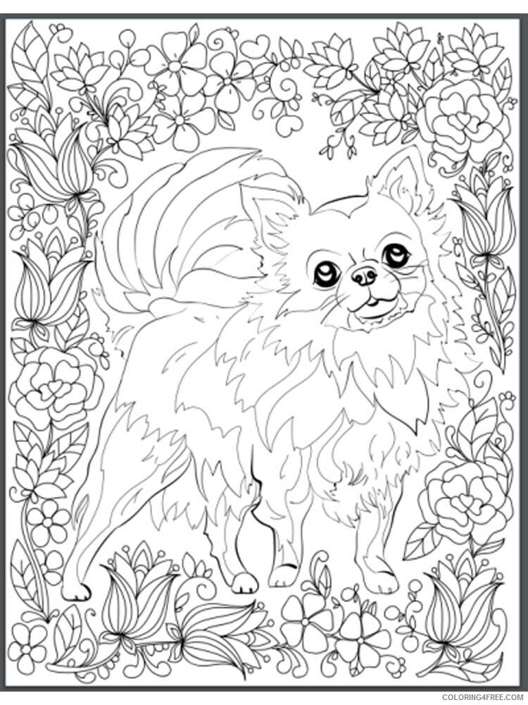 Dog for Adults Coloring Pages dog for adults 21 Printable 2020 579 Coloring4free