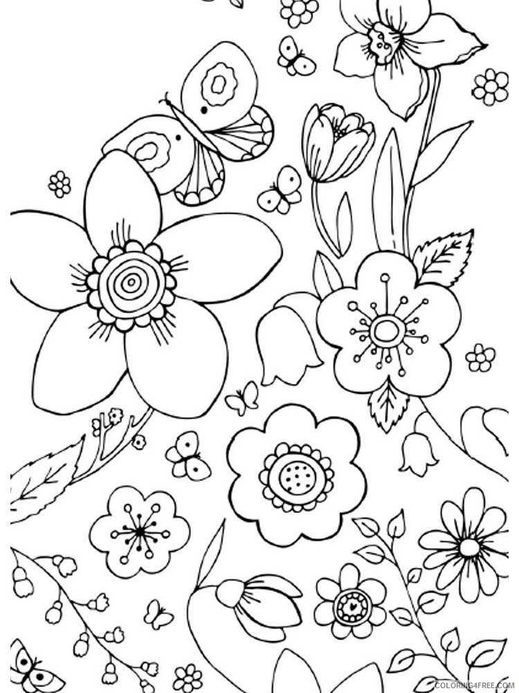 Easy for Adults Coloring Pages easy for adults 1 Printable 2020 585 Coloring4free