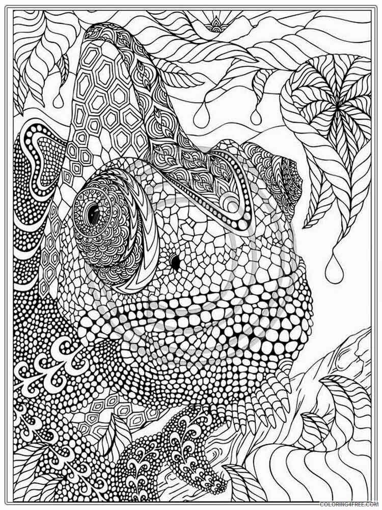 Intricate for Adults Coloring Pages intricate for adults 10 Printable 2020 674 Coloring4free