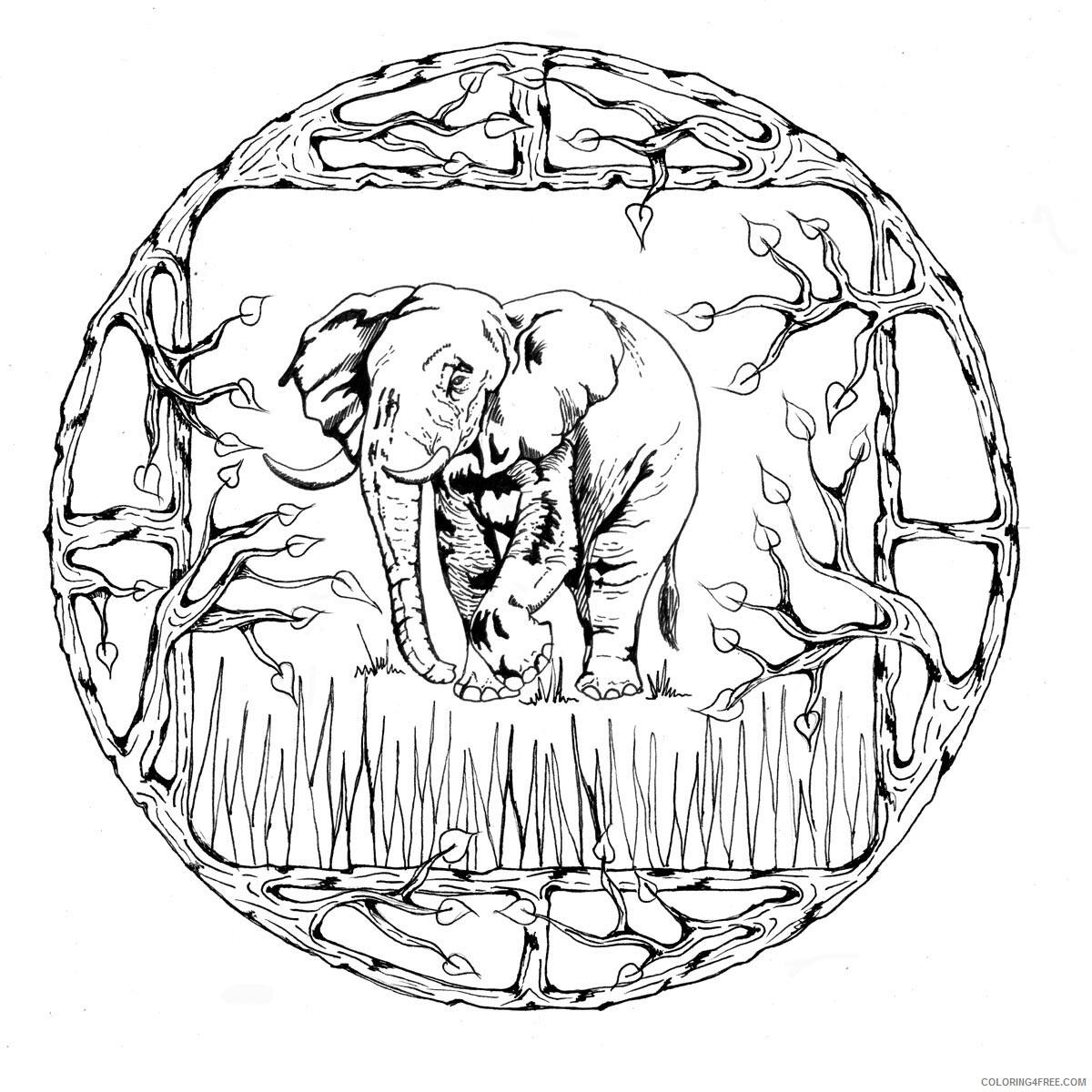 Mandala Coloring Pages Adult Elephant Mandala for Adults Printable 2020 529 Coloring4free