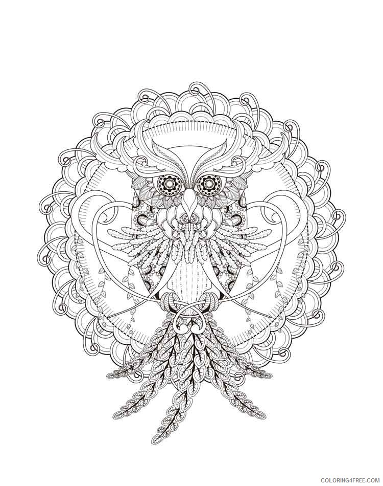 Mandala Coloring Pages Adult mandala adult 17 Printable 2020 564 Coloring4free