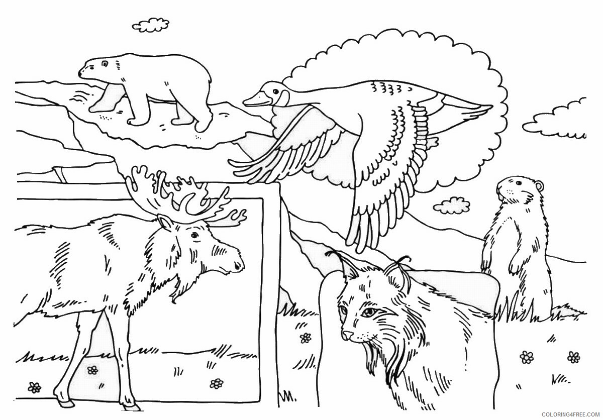 Canada Day Coloring Pages Holiday canada_day_coloring8 Printable 2021 0037 Coloring4free