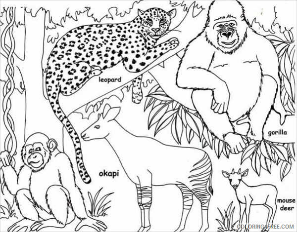 Jungle Coloring Pages Nature Printable Jungle Printable 2021 278  Coloring4free - Coloring4Free.com