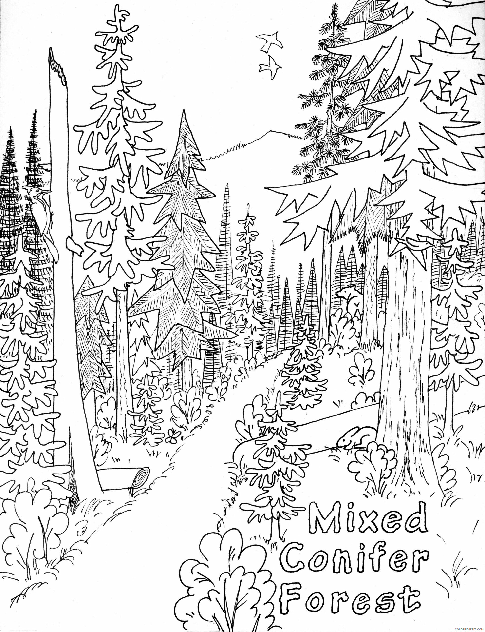 Landscape Coloring Pages Nature Nature To Print Printable 2021 303 Coloring4free Coloring4free Com