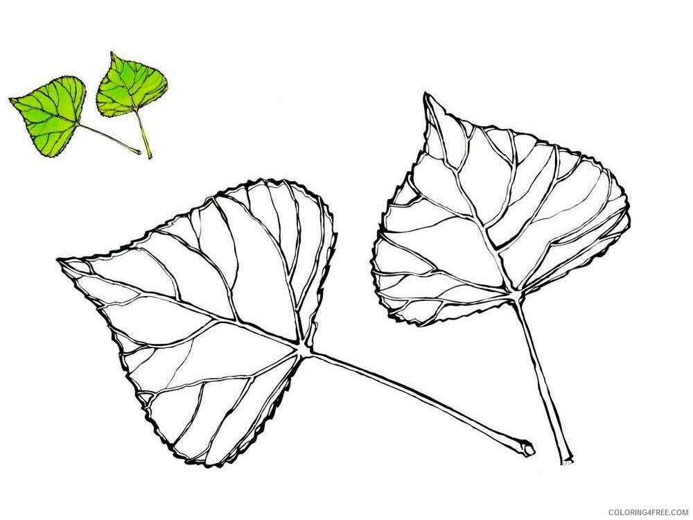 Poplar Tree Coloring Pages Tree Nature poplar tree 1 Printable 2021 610 Coloring4free