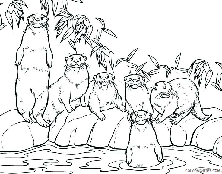 Family Coloring Pages Otter Family Printable 2021 2477 Coloring4free