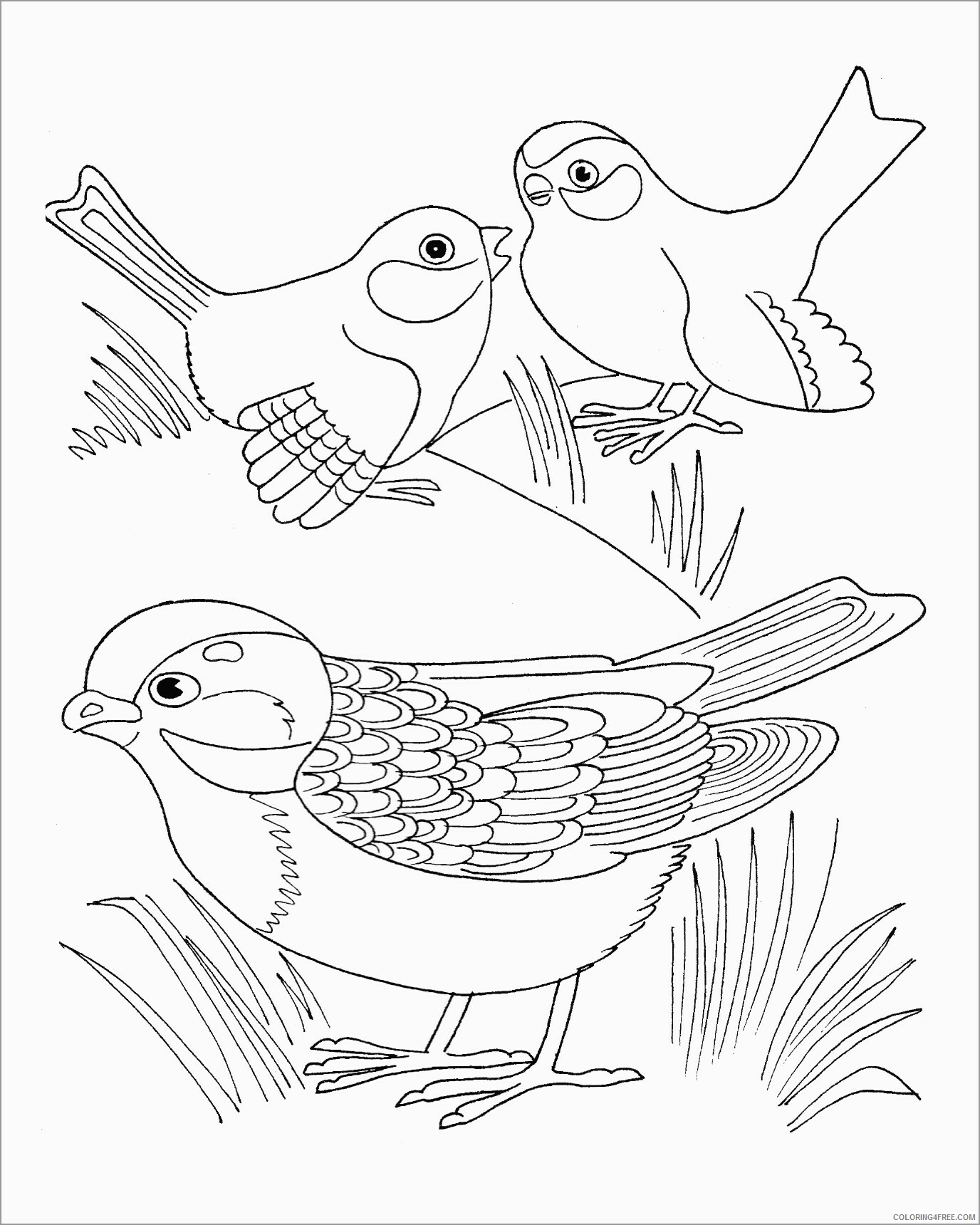 Family Coloring Pages printable sparrows family Printable 2021 2482 Coloring4free