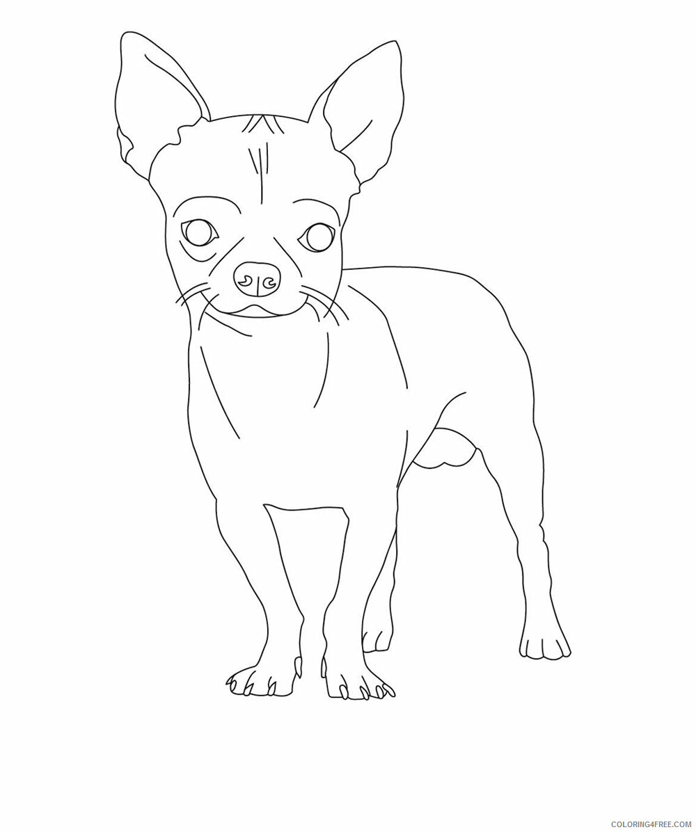 Dogs Coloring Pages Animal Printable Sheets Chihuahua Dog 2021 1510 Coloring4free
