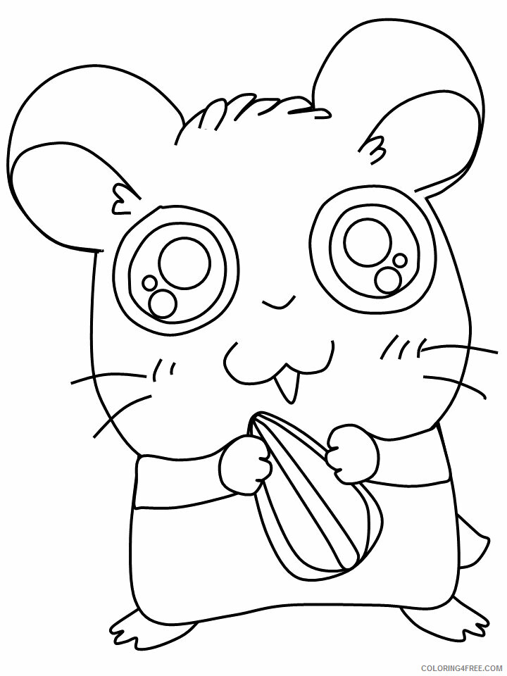 Hamster Coloring Pages Animal Printable Sheets 4 2021 2557 Coloring4free