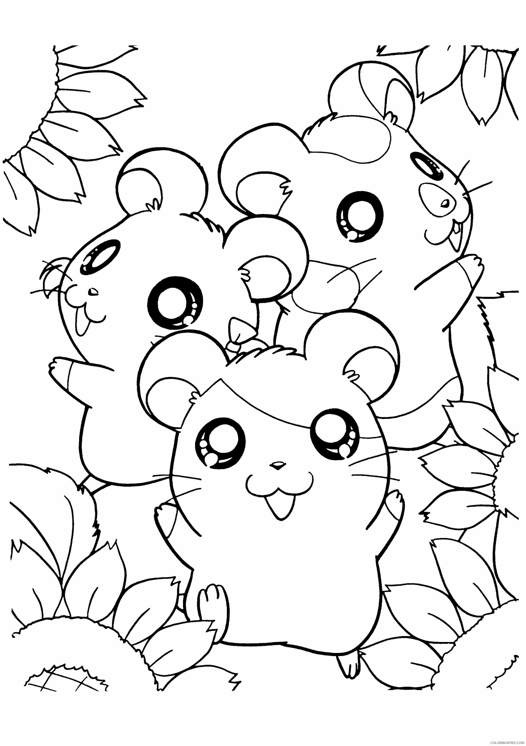 Hamster Coloring Pages Animal Printable Sheets hamster B48PA 2021 2571 Coloring4free