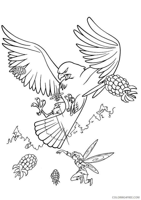 Hawk Coloring Sheets Animal Coloring Pages Printable 2021 2309 Coloring4free