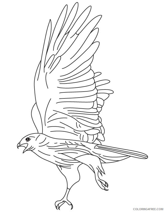 Hawk Coloring Sheets Animal Coloring Pages Printable 2021 2318 Coloring4free