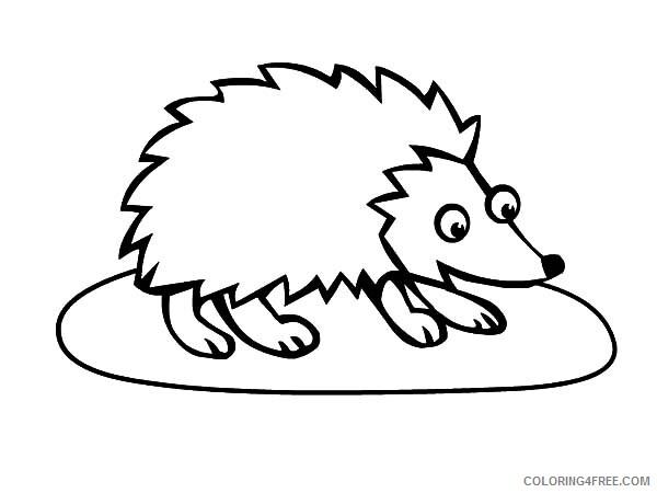 Hedgehog Coloring Pages Animal Printable Sheets Big Eyed Hedgehog 2021 2621 Coloring4free