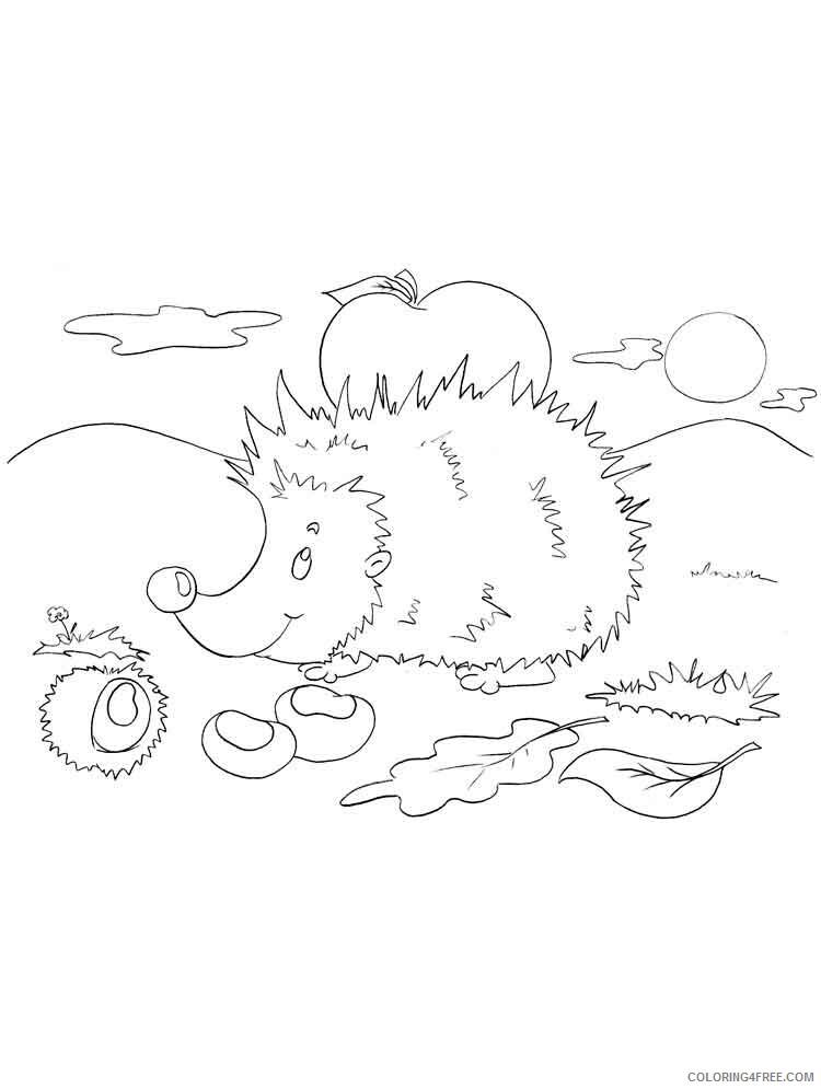 Hedgehog Coloring Pages Animal Printable Sheets animals hedgehog 4 2021 2627 Coloring4free