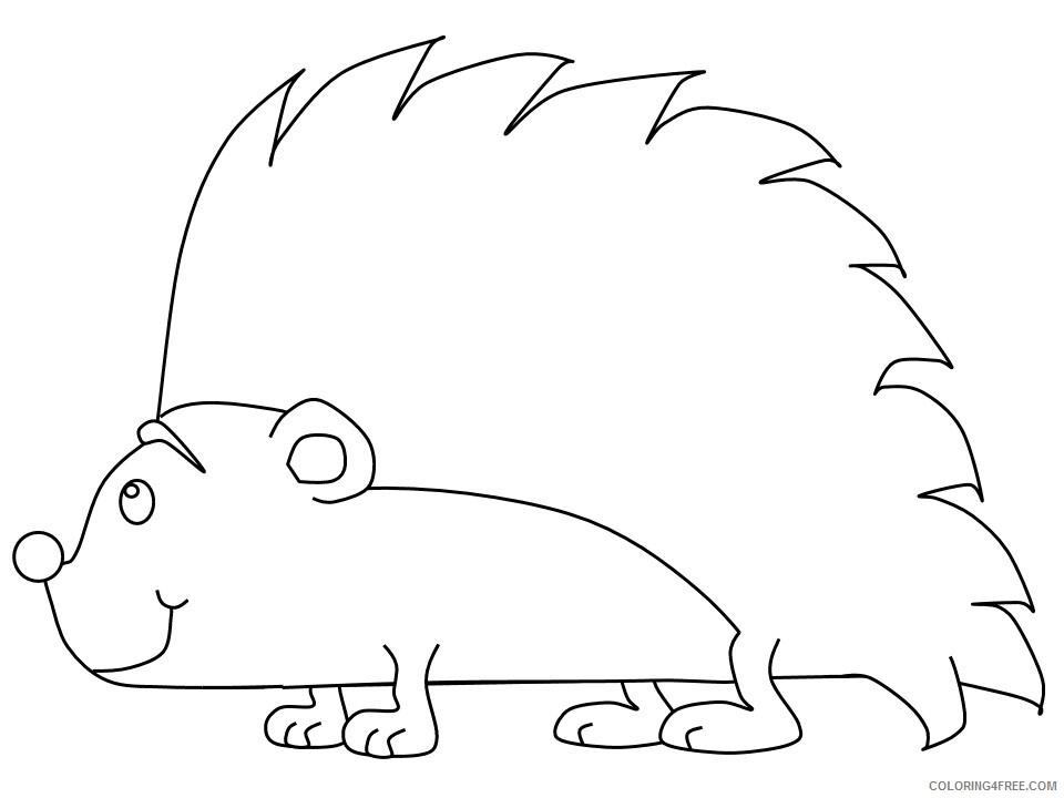 Hedgehog Coloring Pages Animal Printable Sheets hedgehog porcupine 2021 2643 Coloring4free