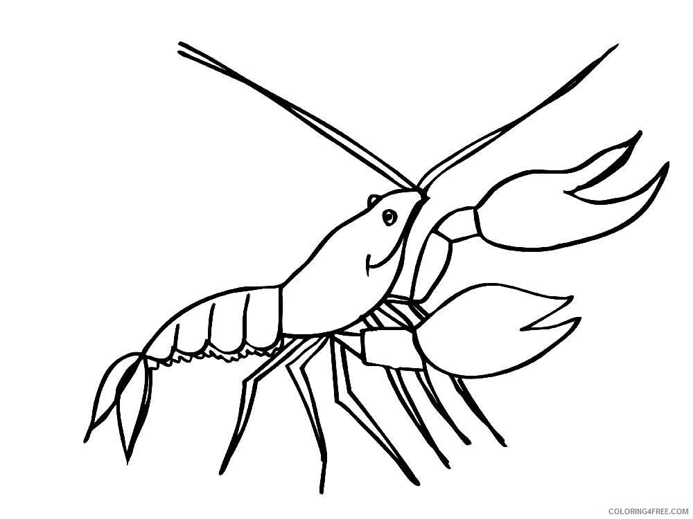 Hermit Crab Coloring Pages Animal Printable Sheets Hermit Crab 3 2021 2659 Coloring4free