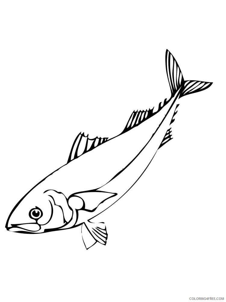 Herring Coloring Pages Animal Printable Sheets Herring 5 2021 2670 Coloring4free