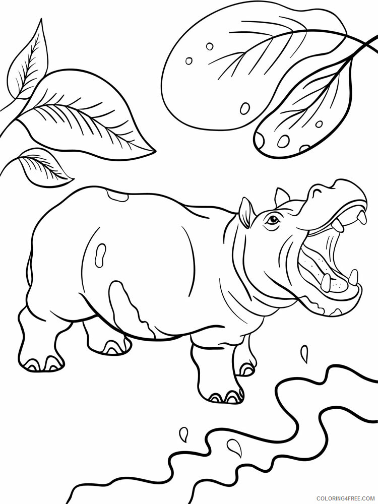 Hippopotamus Coloring Pages Animal Printable Sheets 2021 2711 Coloring4free