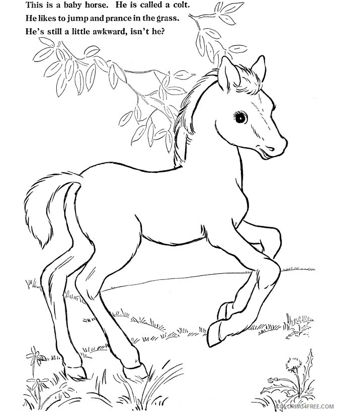 Horse Coloring Sheets Animal Coloring Pages Printable 2021 2447 Coloring4free