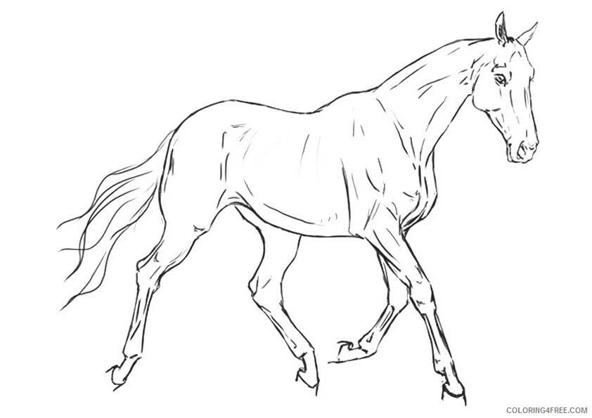 Horse Coloring Sheets Animal Coloring Pages Printable 2021 2460 Coloring4free
