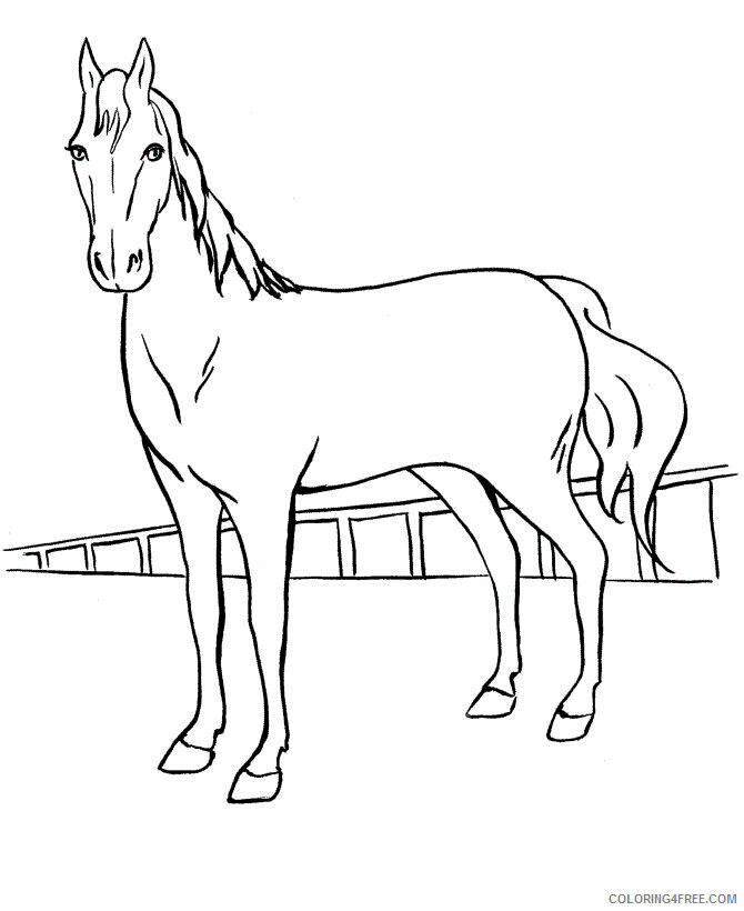 Horses Coloring Pages Animal Printable Sheets Horse Kids 2021 2766 Coloring4free