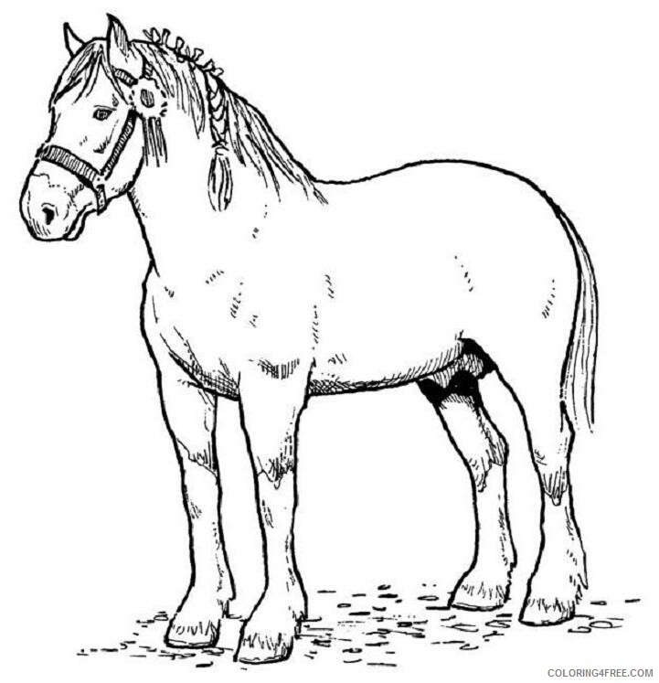 Horses Coloring Pages Animal Printable Sheets Horse To Print 2021 2769 Coloring4free