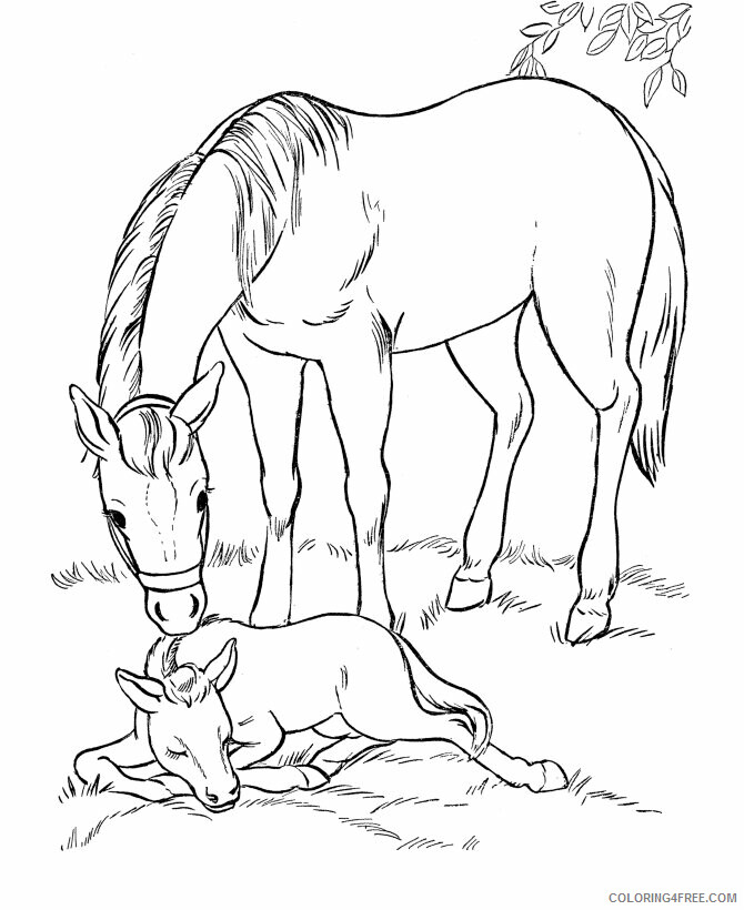 Horses Coloring Pages Animal Printable Sheets Horses 2021 2738 Coloring4free